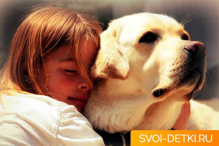 Аллергия у ребенка на домашних животных
